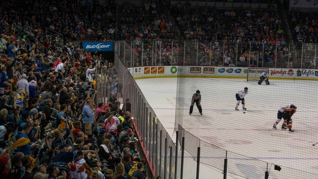 Toledo Walleye in Action