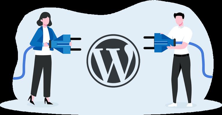 How Can a Custom WordPress Plugin Help My Business?